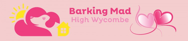 Barking Mad, High Wycombe