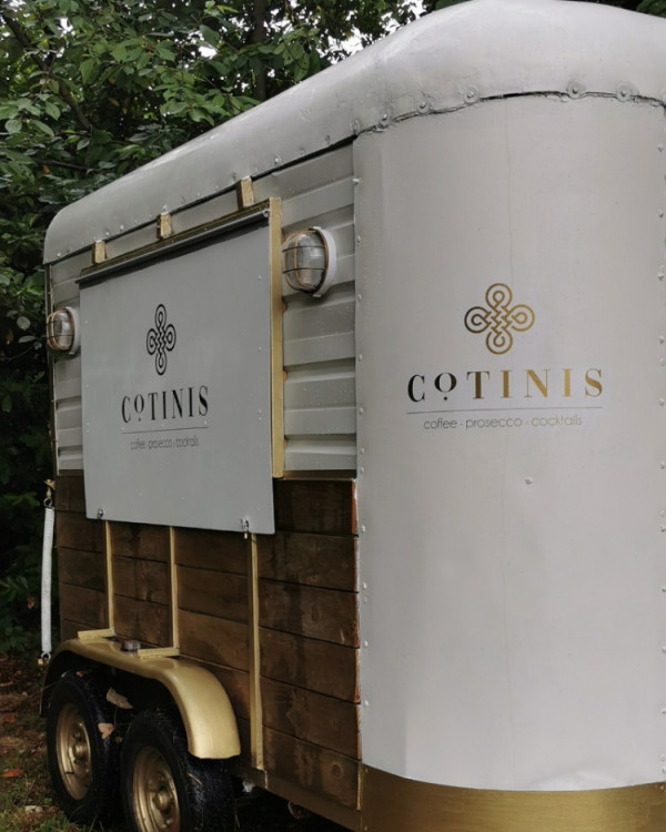 Cotinis